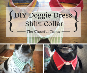 diy-dog-collar