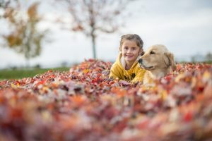 Fall Pet Safety